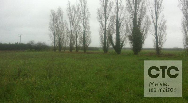 Terrain neuf, 390 m²